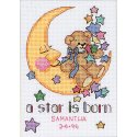 Counted Cross Stitch-16625 Jiffy A Star Is Born