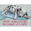 Counted Cross Stitch-16750 Jiffy Power Nap