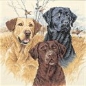 Counted Cross Stitch-35096 Great Hunting Dogs