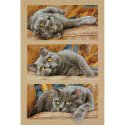 Counted Cross Stitch-70-35301 Max The Cat