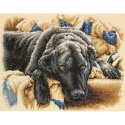 Counted Cross Stitch-70-35321 Guilty Pleasures
