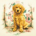 Counted Cross Stitch-70-35329 Soft Spot Counted